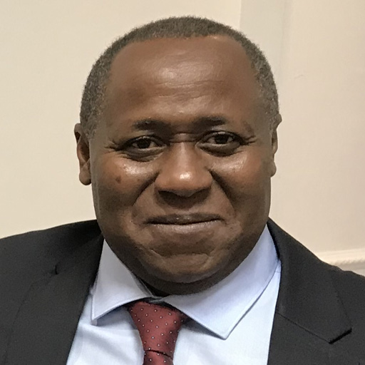 Lamine KONÉ, Secrétaire Fédéral du PADES France